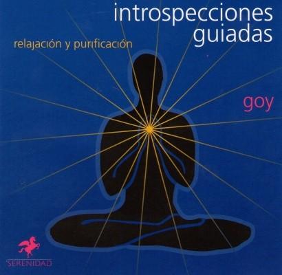 introspecciones_guiadas