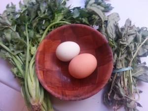 huevo goy