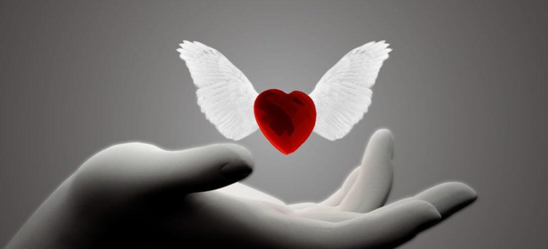 La Esencia del Amor es Libertad
