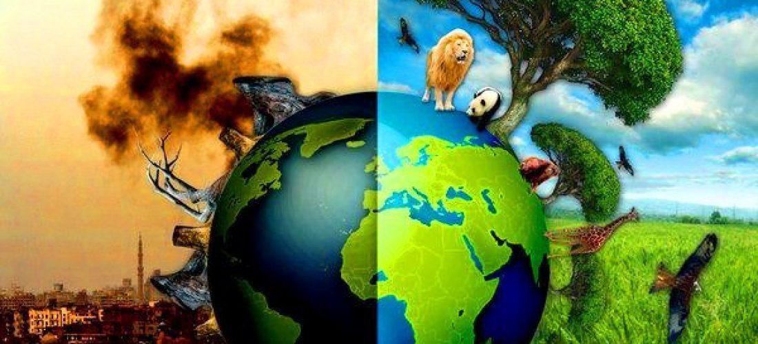 Reflexiones - Herramientas Para Enfrentar La Crisis del Mundo