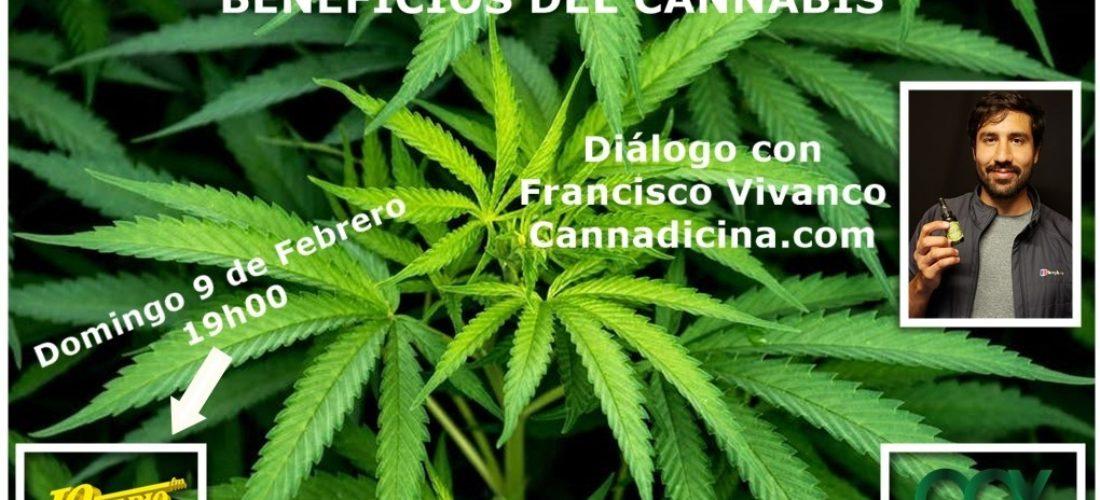 Beneficios del Cannabis con Francisco Vivanco