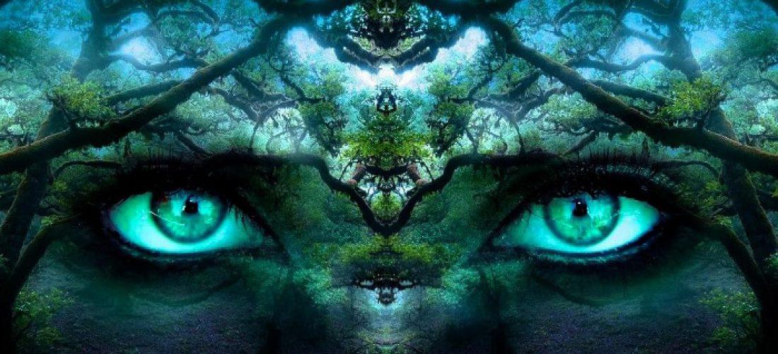 Reflexiones - Mirando al Interior